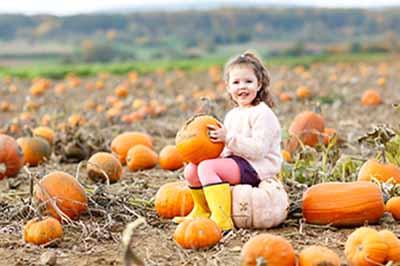 Glen Allen dentist health benefits of Pumpkin